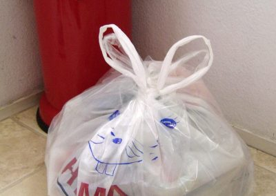Bin Bag Bunny 'the second'