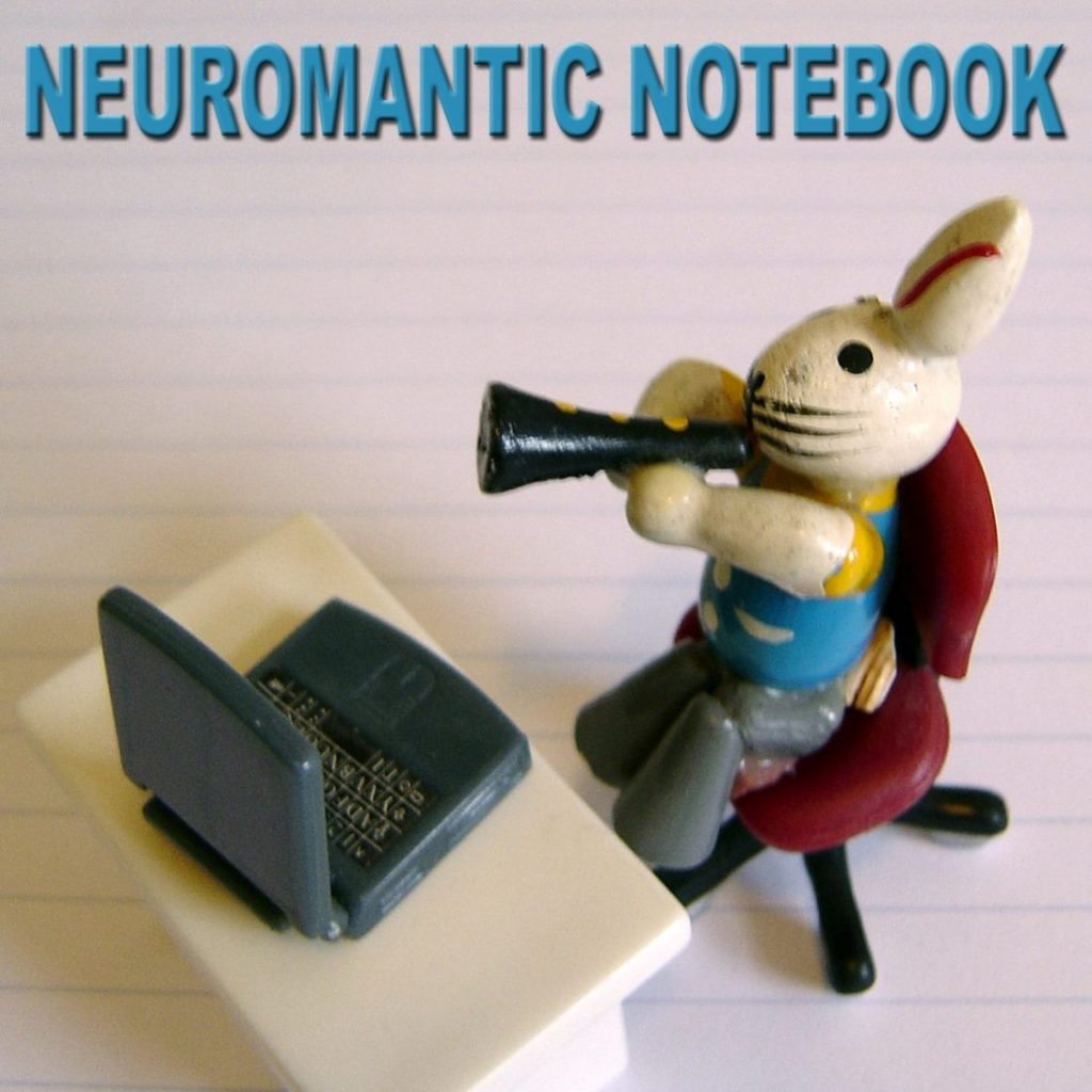 Neuromantic notebook