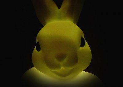 Rabbit, Light