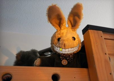 Smile Rabbit Smile